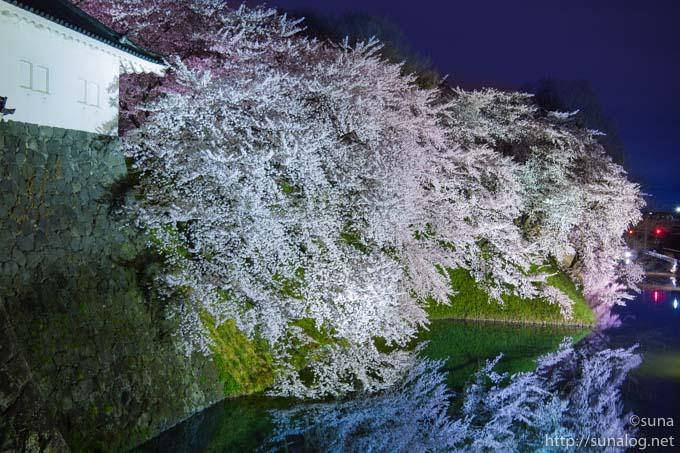 霞城公園の夜桜