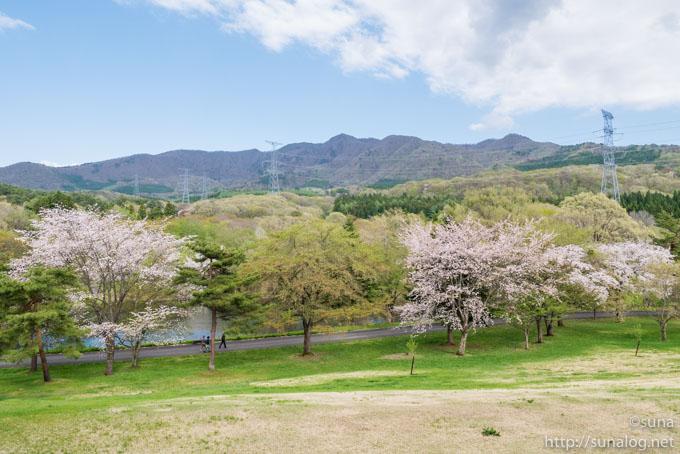 春の野草園の風景