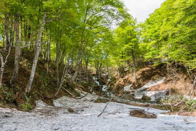 雪解け水が流れる小川