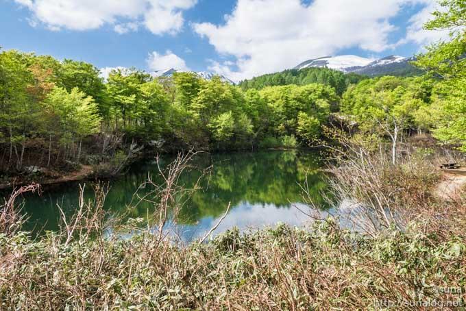 月山と地蔵池の新緑