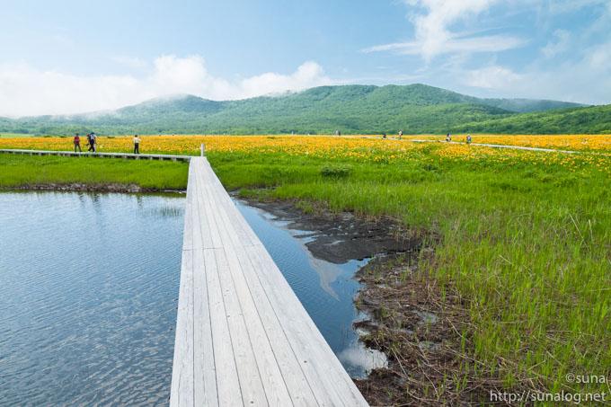 雄国沼湿原の木道