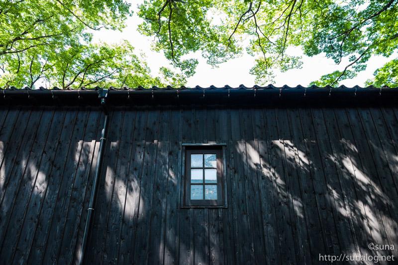 山居倉庫と木漏れ日