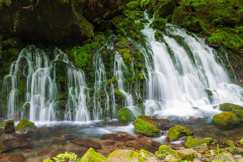 苔が生す元滝伏流水