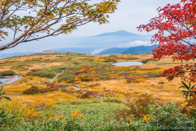 月山弥陀ヶ原湿原と鳥海山