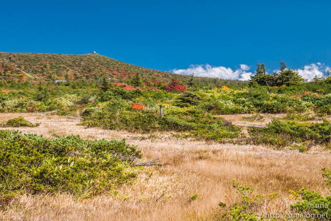秋の御田ノ神湿原を散策