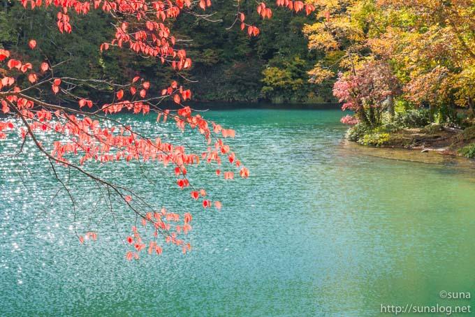 ドッコ沼と赤い紅葉
