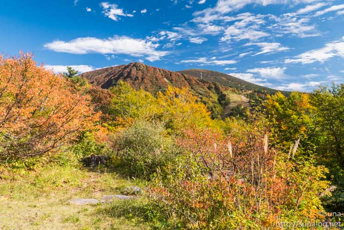 赤く紅葉する三宝荒神山と地蔵山
