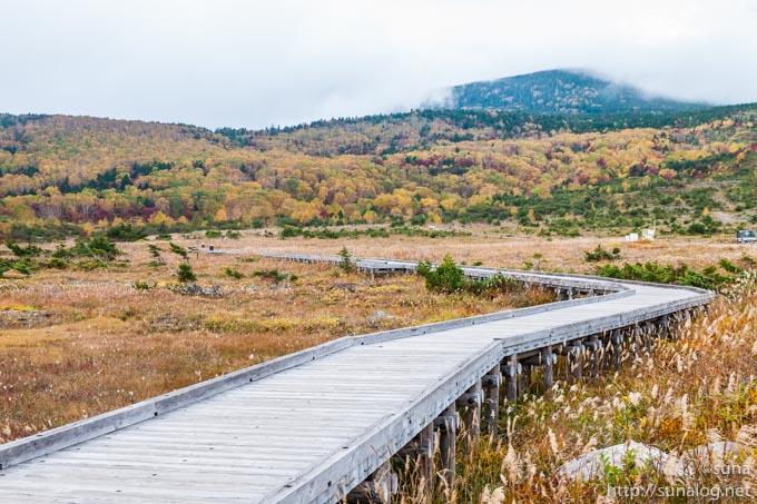 浄土平の木道