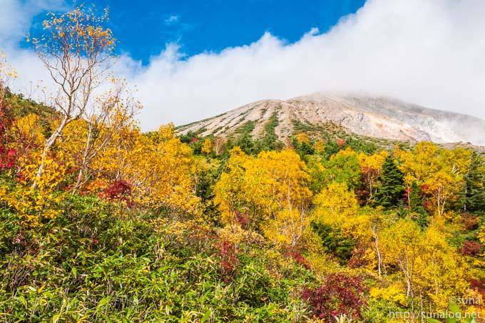 一切経山とダケカンバの黄葉