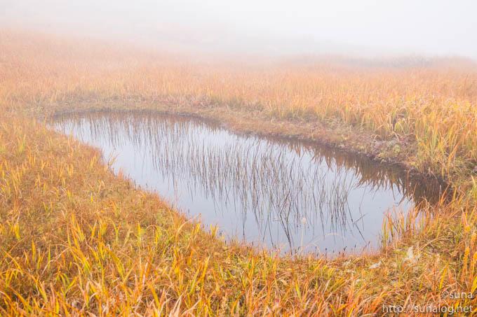 霧で霞む地糖