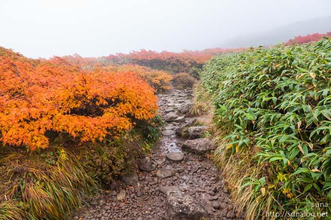 紅葉する月山登山道