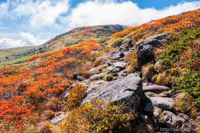紅葉と岩と登山道