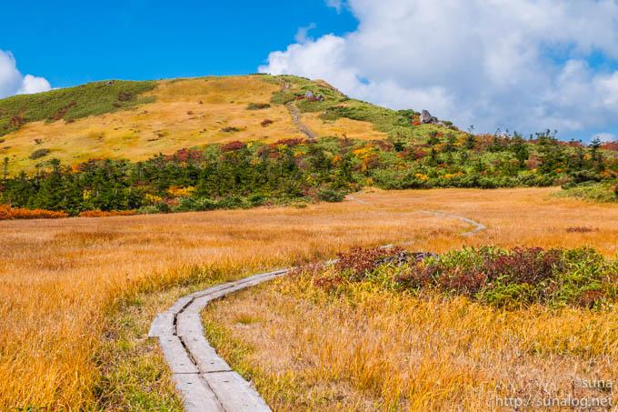 草紅葉の草原
