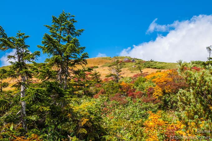 青空と紅葉の登山道