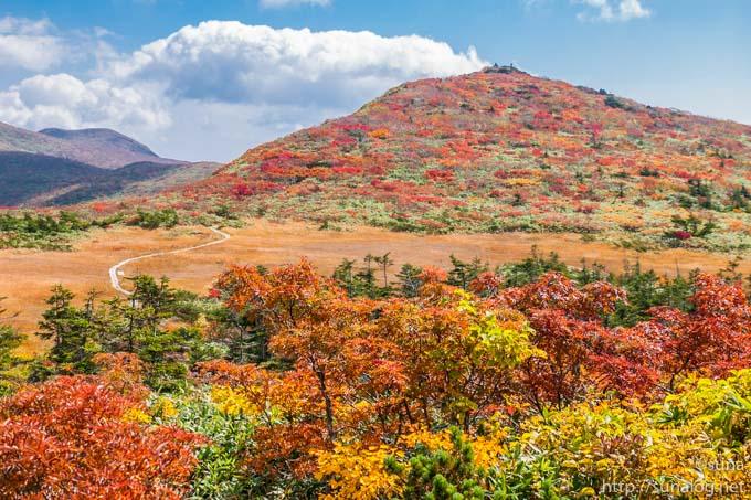 紅葉に染まる山