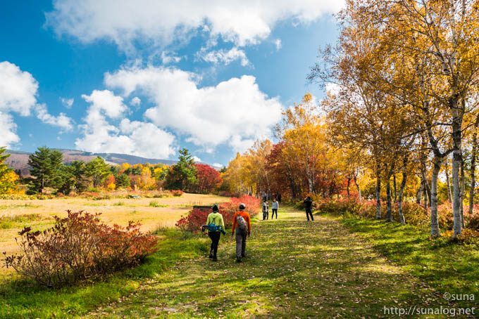 秋の蔵王坊平高原