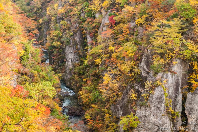 渓流と紅葉