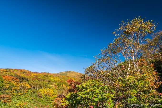 遠くに見える栗駒山