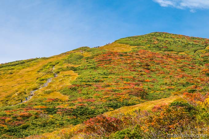 栗駒山への階段