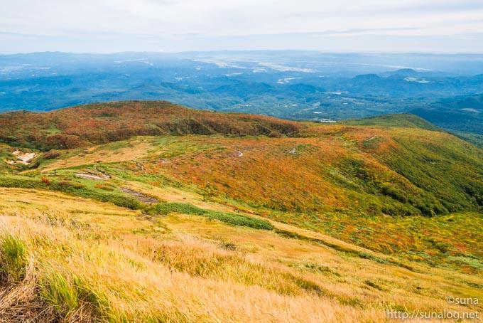 山頂から見下ろす中央コース