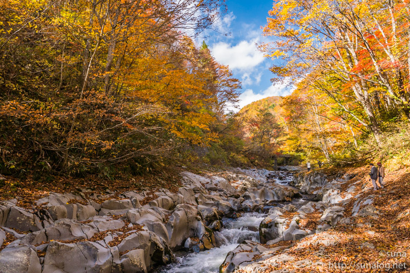 紅葉の中津川渓谷