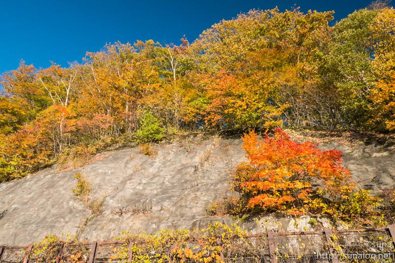 桧原湖沿いの紅葉