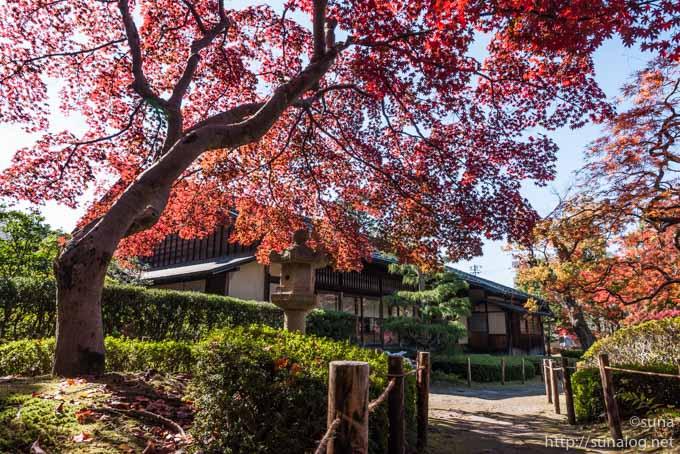 清風荘と紅葉