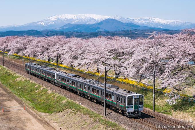電車と蔵王と一目千本桜