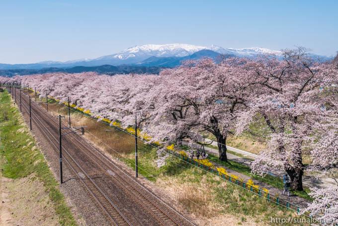 線路と蔵王と一目千本桜