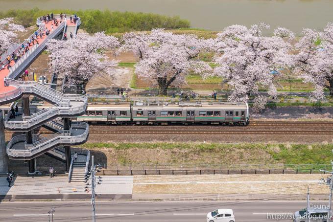 電車としばた千桜橋
