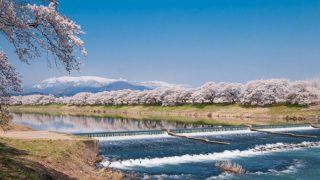 一目千本桜と蔵王と韮神堰