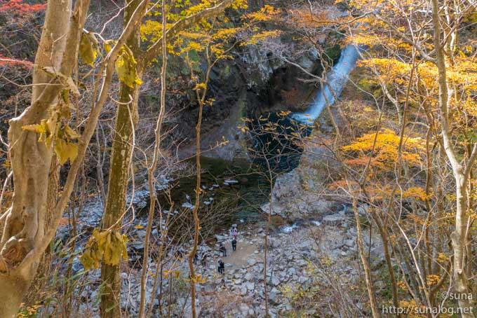 滝と観光客