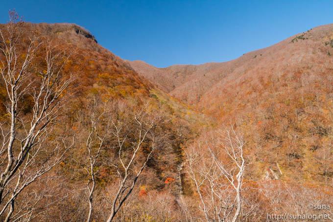 落葉する山々