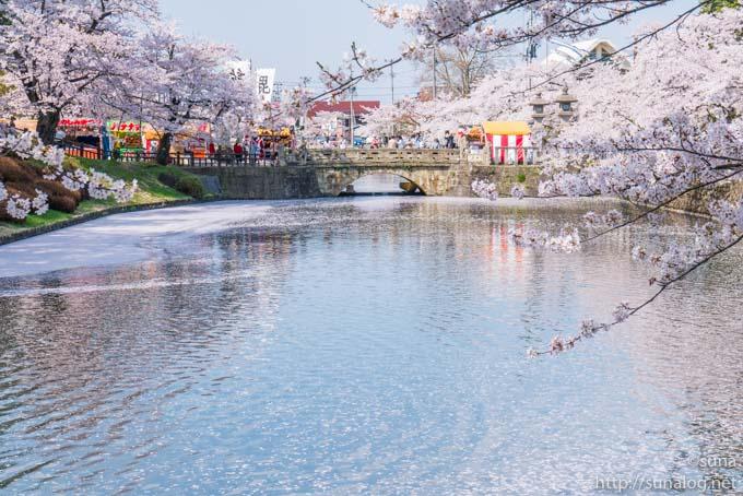 舞鶴橋とお堀の桜