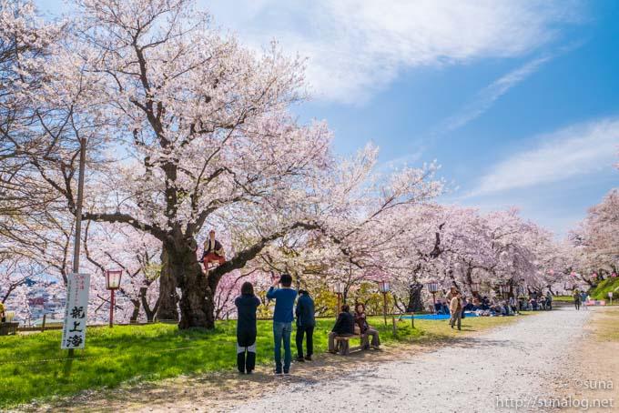 烏帽子山公園の花咲か爺さん