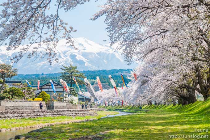 中山河川公園