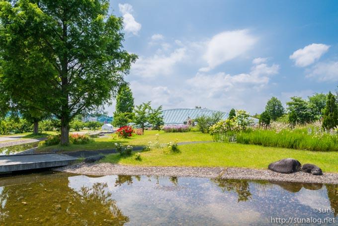 初夏の最上川ふるさと公園