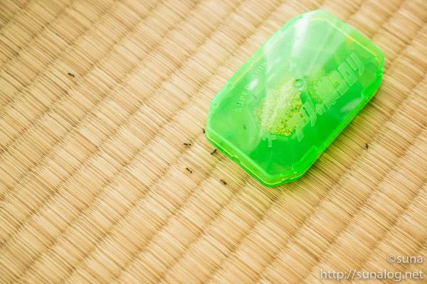 スーパーアリの巣コロリに群がるアリ