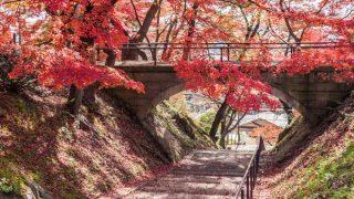 あざやかな紅葉と康寿橋