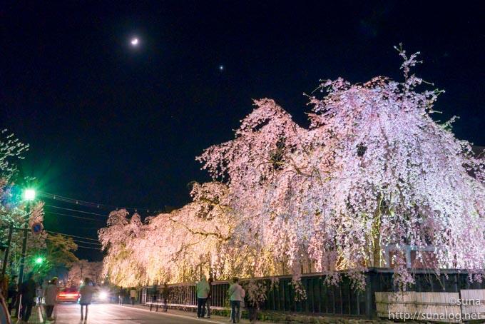 角館武家屋敷の夜桜ライトアップ