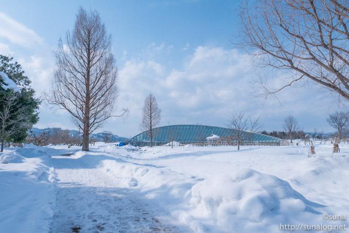 冬の最上川ふるさと総合公園