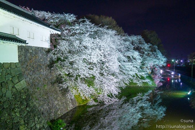 山形の桜名所 霞城公園の夜桜