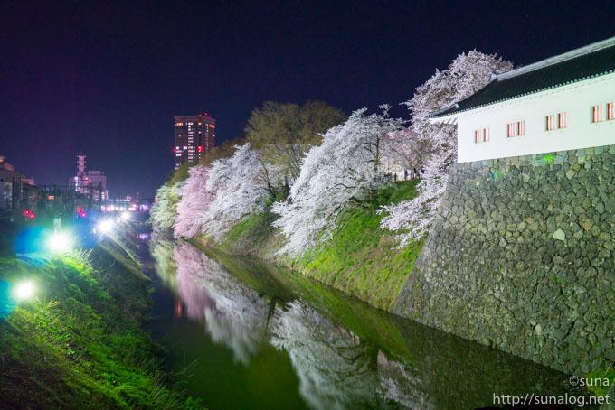 東大手門の夜桜ライトアップ