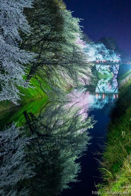 東大手門の橋と夜桜