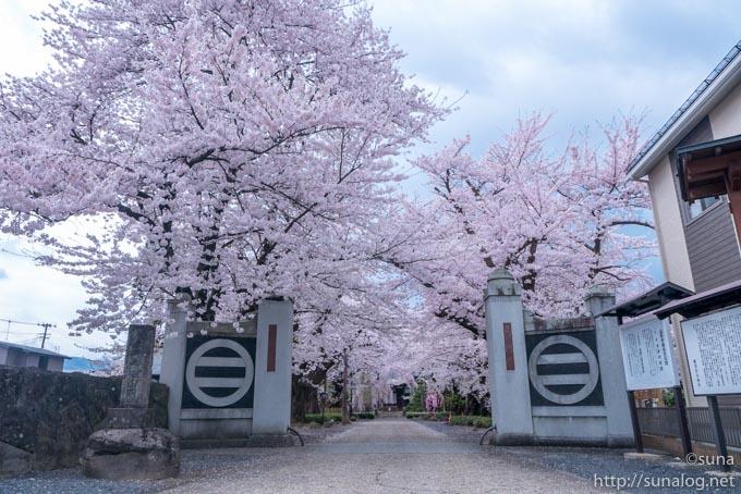 光禅寺の門と最上氏の家紋