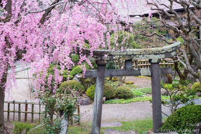 光禅寺の鳥居