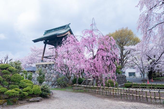 光禅寺の鐘楼