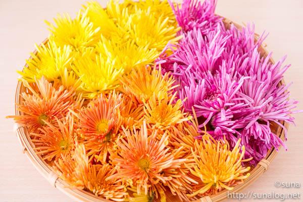 3色の食用菊「もってのほか」